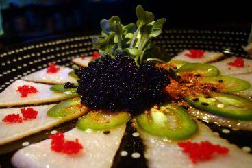 SushiSong.jpg
