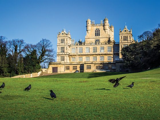 Wollaton Hall. Photography: Arquez.